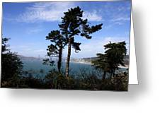 Overlooking The Bay Greeting Card