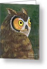 Owl 2009 Greeting Card