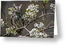 Owl Among The Blossoms Greeting Card