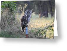 Owl Cherish This Moment Forever Greeting Card