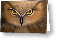 Wise Eyes Greeting Card