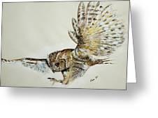 Owl In Flight Greeting Card
