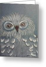 Owl In The Blue Greeting Card by Ginny Youngblood