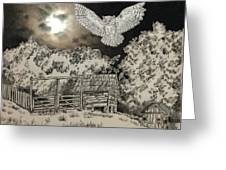 Owl In The Moonlight On Brush Mountain Greeting Card