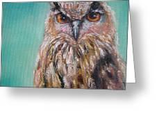 Owl No.5 Greeting Card