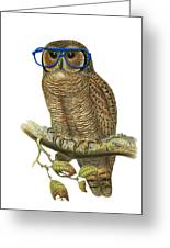 Owl Sitting On A Branch With Blue Glasses Greeting Card