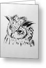 Owl Study Greeting Card