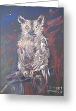 Owl Watchers Greeting Card