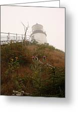 Owls Head Fog Greeting Card