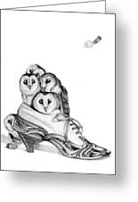Owls In A Shoe Greeting Card
