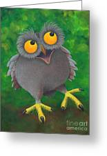 Owlvin Greeting Card