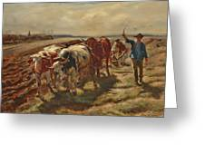Oxen Plowing Greeting Card