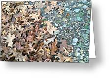 Ozark Autumn Greeting Card
