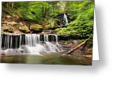 Ozone Falls Ricketts Glen Greeting Card