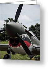 P - 40 Warhawk - 5 Greeting Card