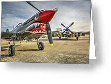P40 And P51 At Hollister Greeting Card