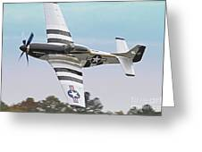 P51 Mustang Fighter Aircraft Greeting Card