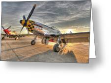 P51d Kimberely Kay And Comfortably Numb At Hollister Greeting Card