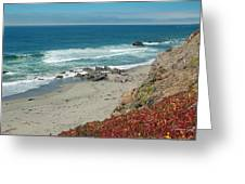 Pacific Coast View IIi Greeting Card