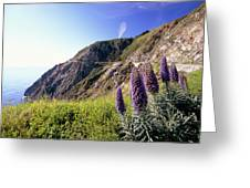 Pacific Coast View With Blue Wildflowers Greeting Card by George Oze