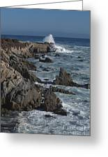 Pacific Grove Seascape Greeting Card