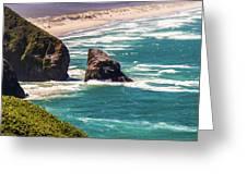 Pacific Ocean Shore Greeting Card