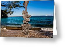Pacific Rope Swing Greeting Card