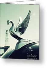 Packard Swan Hood Greeting Card