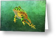 Pacman Frog Greeting Card