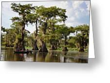 Paddling In The Bayou Greeting Card