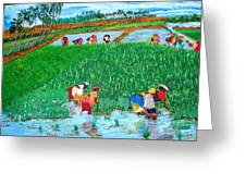 Paddy Planters Greeting Card