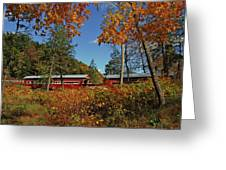 Paden Twin Covered Bridges Greeting Card