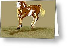 Paint Horse Greeting Card