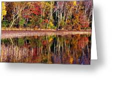 Paint Like Nature Greeting Card