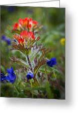 Paintbrush In The Mist Greeting Card