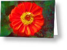 Painted Beauty Greeting Card