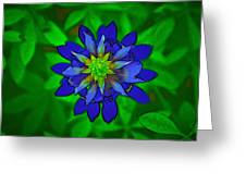 Painted Bluebonnet Greeting Card