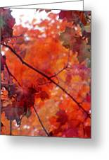 Painted Branches Abstract 5 Greeting Card