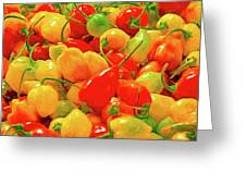 Painted Chilies Greeting Card