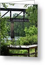 Painted Congaree Four Greeting Card
