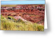 Painted Desert 0242 Greeting Card