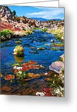 Painted Hot Creek Springs Greeting Card