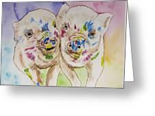 Painted Ladies Greeting Card