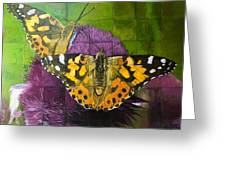 Painted Lady Butterflies Greeting Card