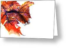 Painted Leaf Series 1 Greeting Card