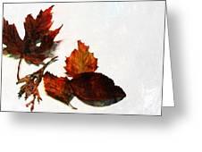 Painted Leaf Series 5 Greeting Card