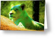 Painted Lion Greeting Card