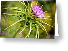 Painted Milk Thistle Greeting Card