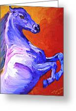 Painted Mustang Greeting Card