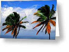 Painted Palm Trees Greeting Card